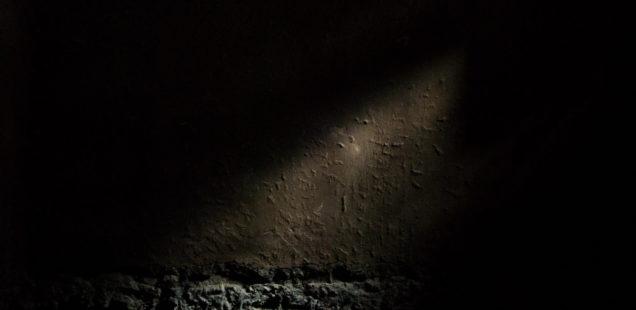 [Image : Abstrait-distrait #2]